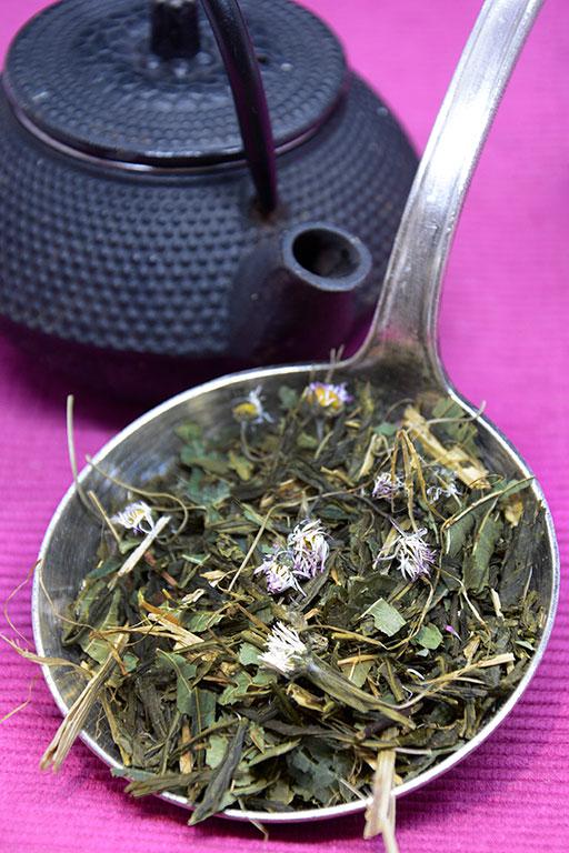 thé vert «germinal»